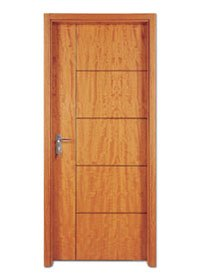 Flush Door PP005T