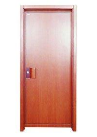 Flush Door PP014