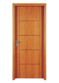 Flush Door PP003T