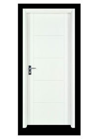 Flush Door PP003