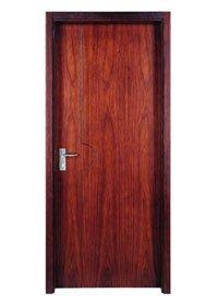 Flush Door PP007T